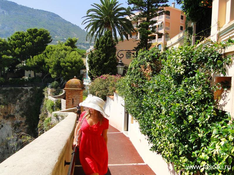 За 8 евро в Монте-Карло