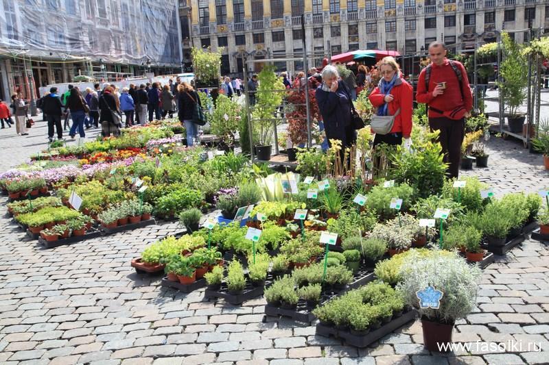 Рынок на площади Гран-плас