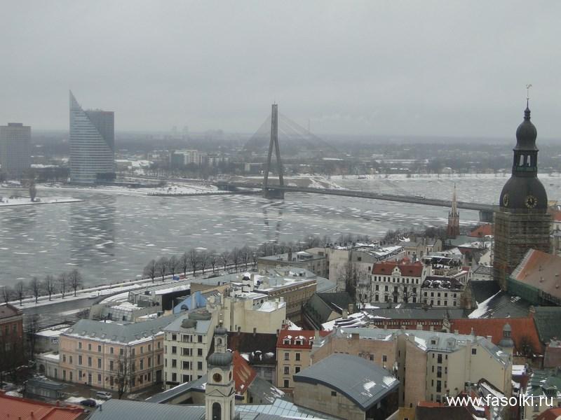 Вид на Вантовый мост и колокольню Домского собора