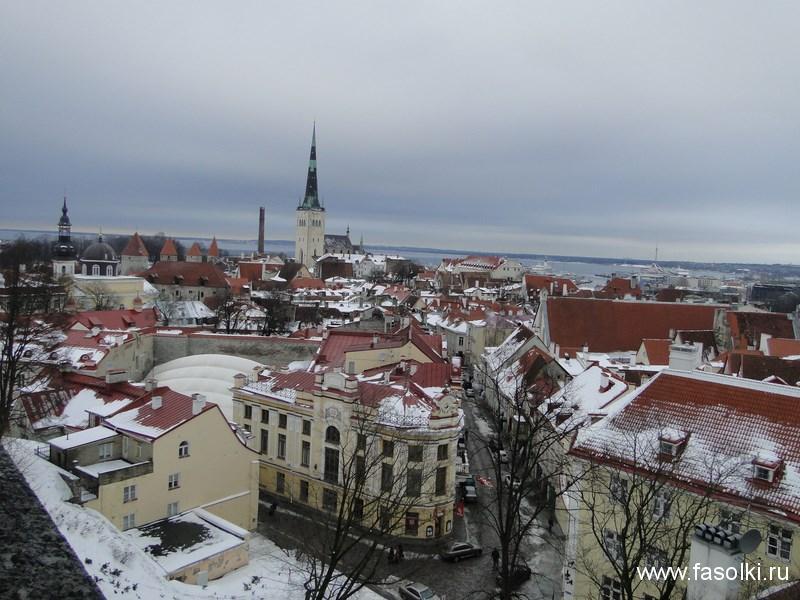 Вид с холма Тоомпеа на Балтийское море и церковь Олевисте