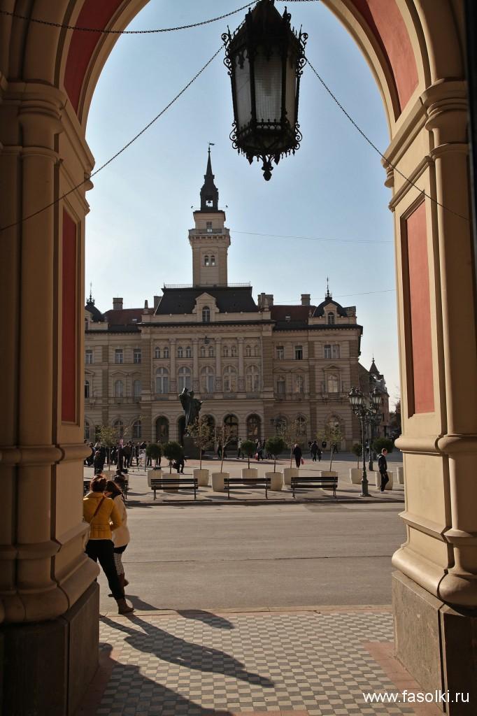 Площадь Свободы и городская ратуша