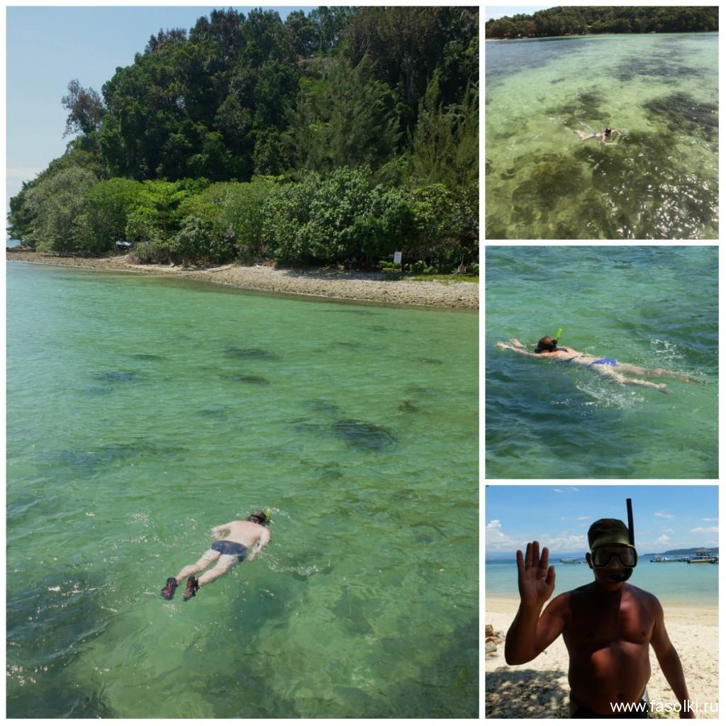 Снорклинг на острове Гайа