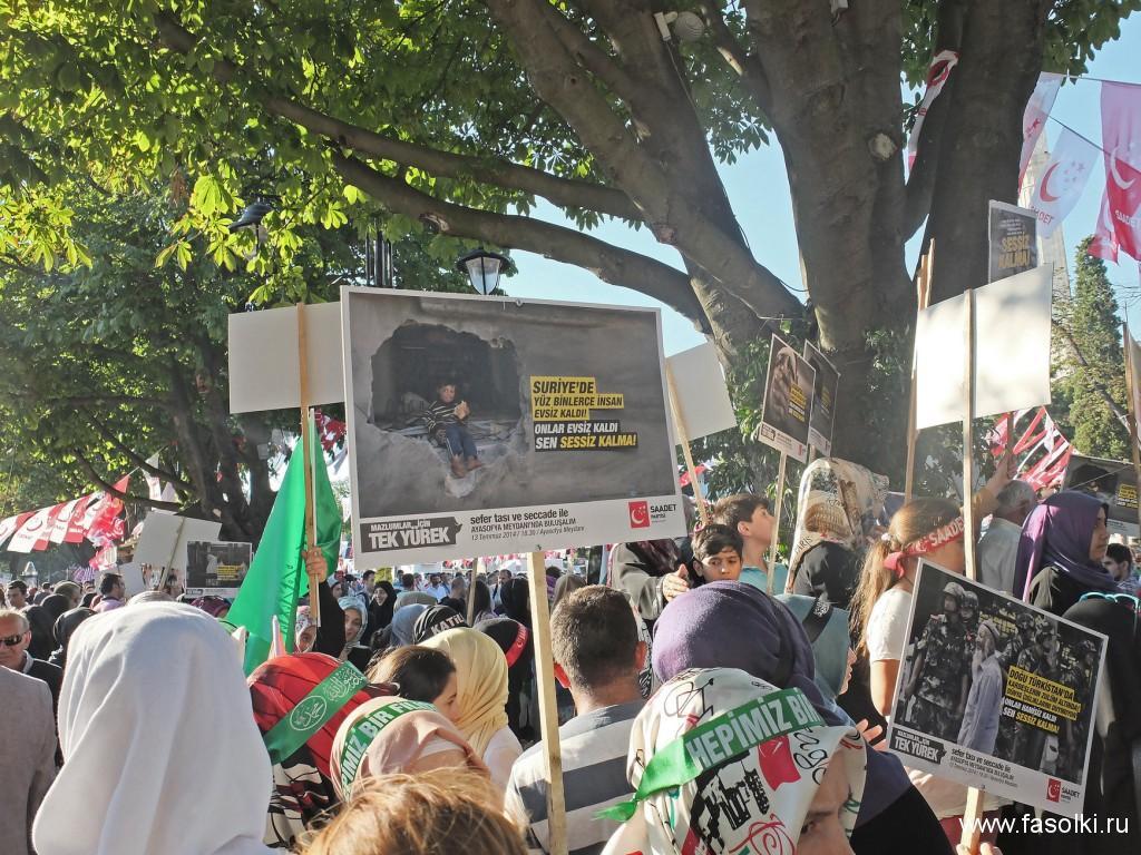Демонстрация в поддержку Палестины